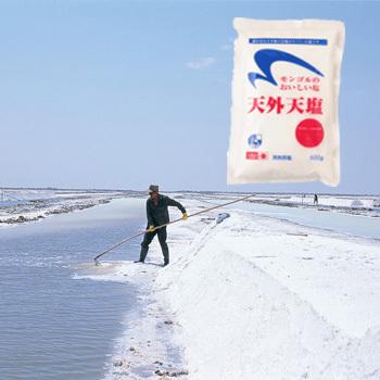 定期特価 天外天塩 600g×1袋