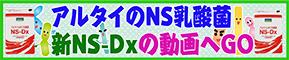 新NS−Dxの動画へGO