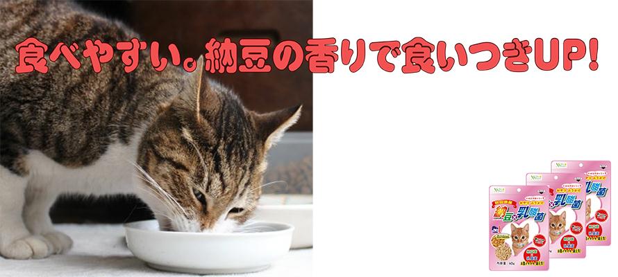 納豆×乳酸菌(猫用) 40g×3袋