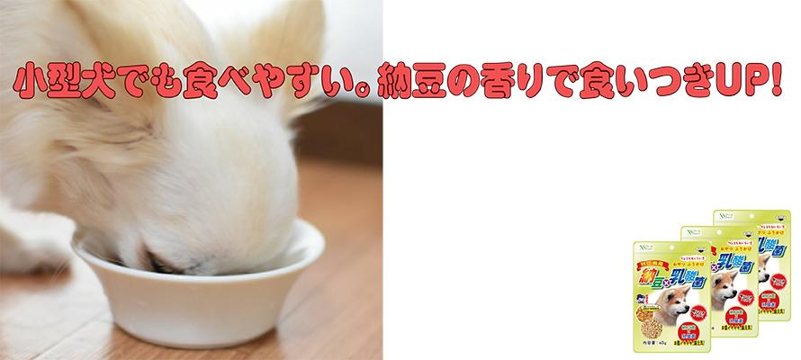 納豆×乳酸菌(犬用) 40g×3袋