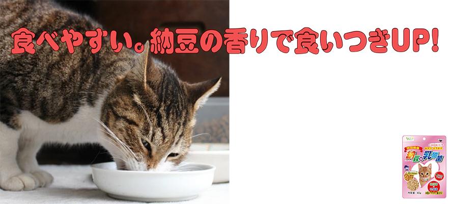 納豆×乳酸菌(猫用) 40g×1袋
