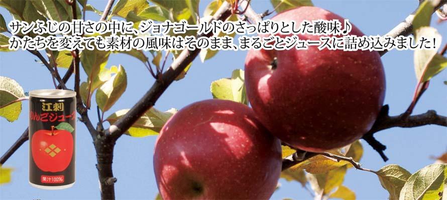 りんごジュース 藤原缶 195ml×1本