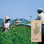 有機:恵みの緑茶(やや深蒸) 100g×1袋