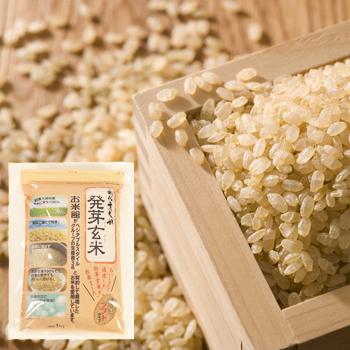 定期特価 契約栽培米発芽玄米 1kg×1袋