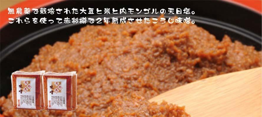 特価 天外天味噌(こうじ) 1kg×2袋