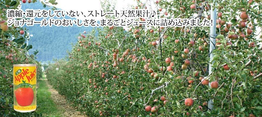 特価 りんごジュース ジョナ缶 195ml×1本