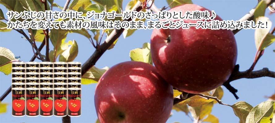 特価 りんごジュース 藤原缶(箱入) 195ml×30本