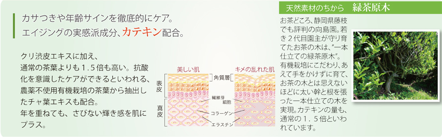 カサつきや年齢サインを徹底的にケア。エイジングの実力派成分、カテキンを配合。